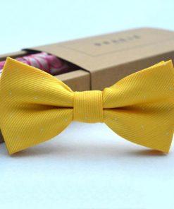 Κίτρινο παπγιόν με ασημένιες βούλες