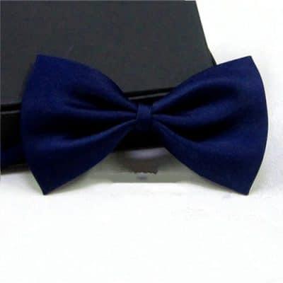 Μπλε σκουρο παπιγιόν