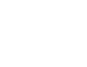minifashion logo white